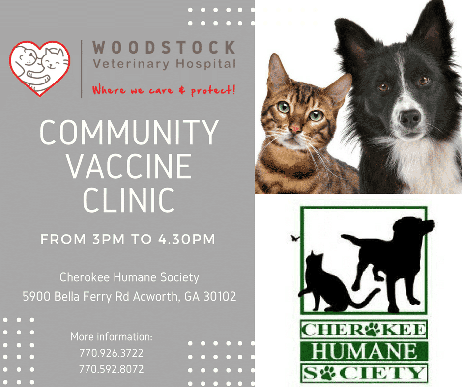 Woodstock Veterinary Hospital-Community Vaccine Clinic